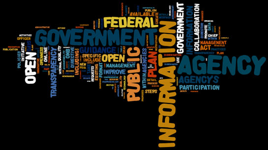 Wordle: Open Government Dialogue